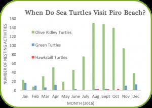sea-turtle-bar-graph