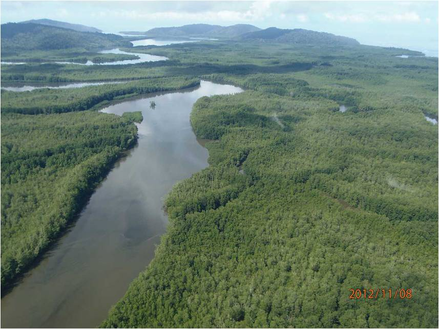 Terraba Sierpe wetlands, Costa Rica. Photo credit: Cavu
