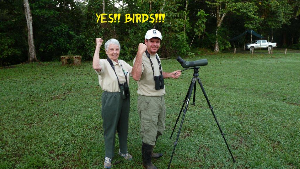 yes birds (3)
