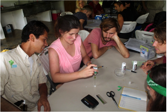 Osa staff and research field assistants conducting pH tests. Photo by, Manuel Ramírez