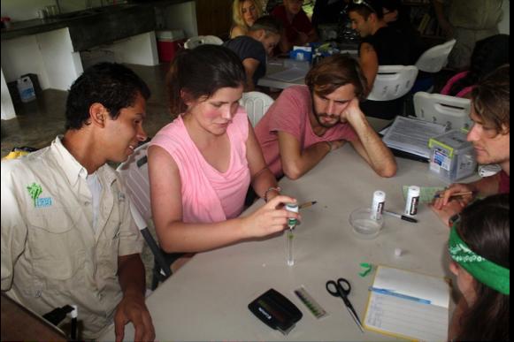 Personal de Osa y asistentes de campo de investigación que llevan a cabo pruebas de pH. Foto por Manuel Ramírez