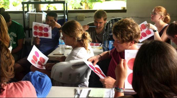Los asistentes de investigación de Frontier y Conservación Osa aprender los métodos correctos para el recuento de colonias de E. coli. Foto por, Anahí Quiñones