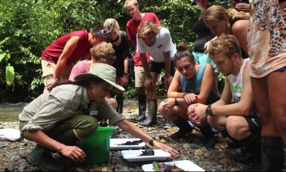 Tara de Stoud Water Research Center demuestra paquetes de hojas. Foto por, Anahí Quiñones