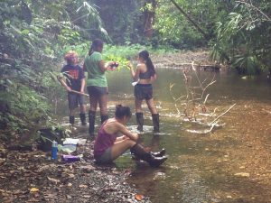 Exploring Osa's watershed