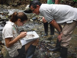 nelson-and-hilary-looking-for-macroinvertebrates-lapa-rios