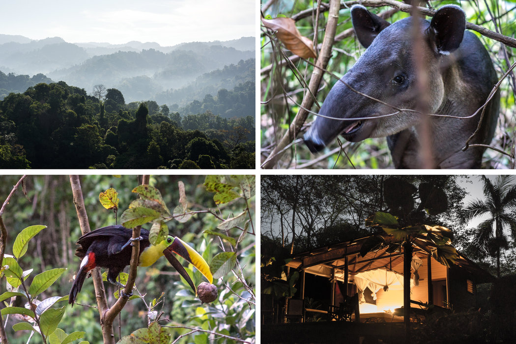 In Search of 'Wild' Costa Rica