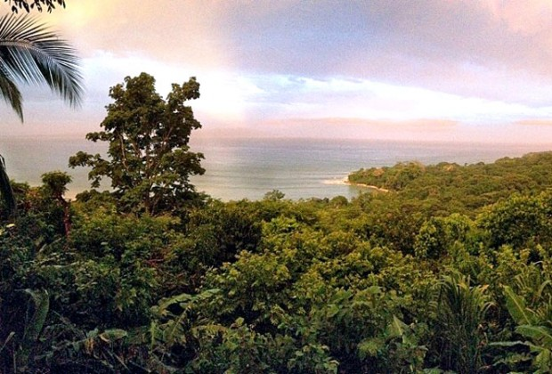 2014: Now Is the Perfect Time to Go to Costa Rica