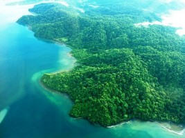 """2014: Looking for the """"Wild"""" Costa Rica? Visit the Osa Peninsula!"""