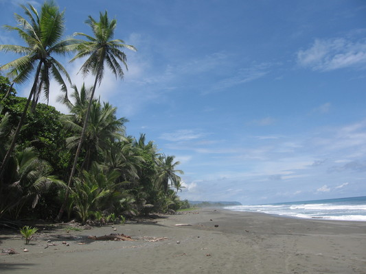2009: Travels in Geology: The Osa Peninsula - a different side of Costa Rica
