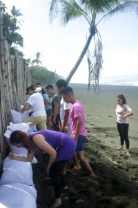 Photo by Manuel Sanchez, group builds up the outer walls of the hatchery