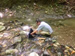 Photo by Sawyer Judge, Nelson collects leaf litter at Rio Carbonera to look for macroinvertebrates