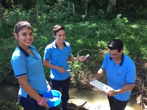 A group of students measuring the water