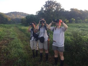 blogphoto1_osa-team-birding