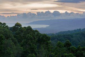 Precision conservation: High tech to the rescue in the Peruvian Amazon